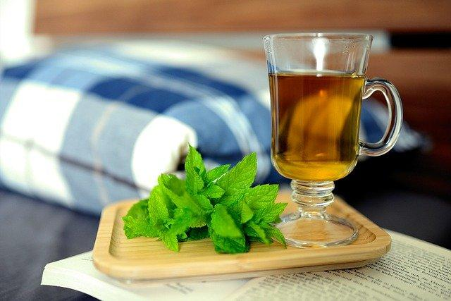peppermint tea recovery ayurveda