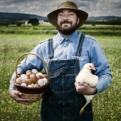 farmer holding basket full of organic eggs in field with free range hen